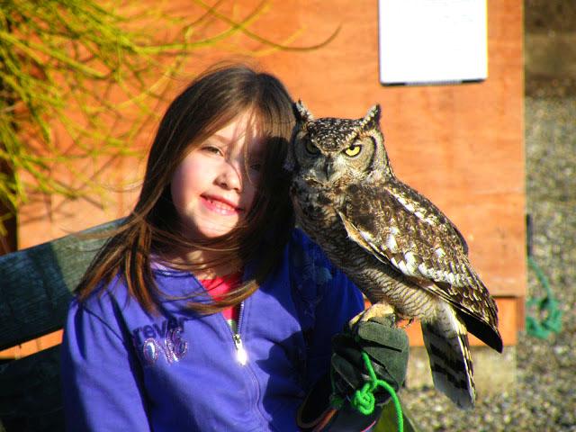 Falconry school tour
